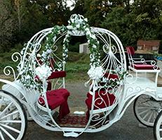 Beautiful Carriage